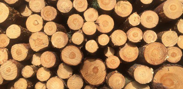 Wer hat Natur - und Baumaterialien?